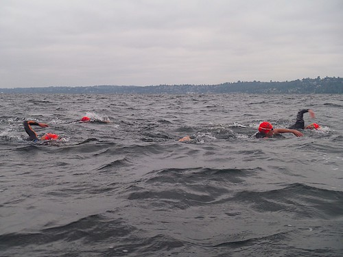 Swimming across Lake Washington