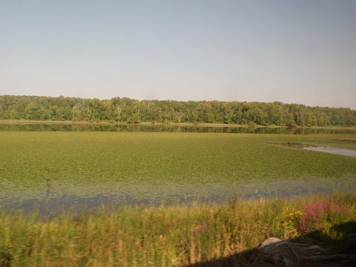 Amtrack New York City to Buffalo