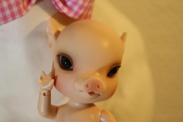 NOUVELLES PHOTOS de Sacha en bas de P1 (BJB cochon Elf Doll) 4924582102_792579ac79_z