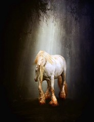 Shadowfax (~Brenda-Starr~) Tags: trees light bw horse forest photomanipulation fantasy shodow shadowfax brendastarr totr memoriesbook august2010 artistictreasurechest