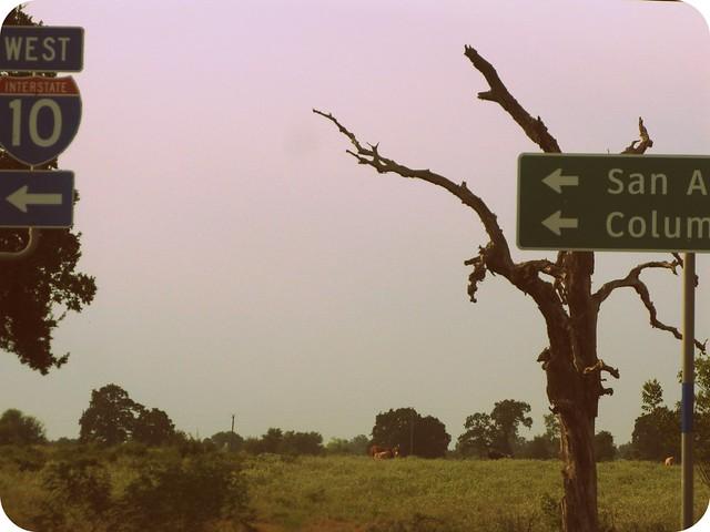 road trip to austin.