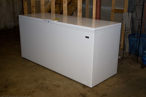 The New Freezer