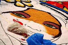 Sicilia_0194_720T (Lastorder) Tags: italy color art canon italia estate arte sale noto sicily cultura sicilia barocco 2010 maestri colorart infiorata valdinoto 40d canon40d infioritori