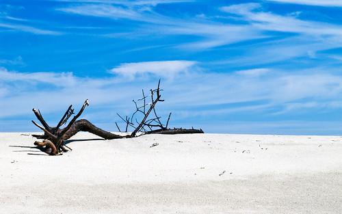 North Beach, Chatham MA