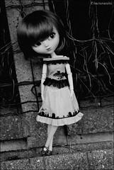 Week end chez lholy-chan (* Charismatchii *) Tags: nikon meetup meeting fox pullip pinkystreet rencontre momoko d60 taeyang cgmav lholychan charismatchii