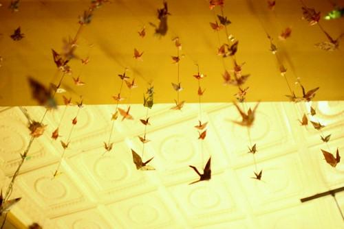 100 cranes