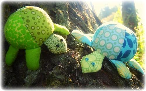 Tortoise 025