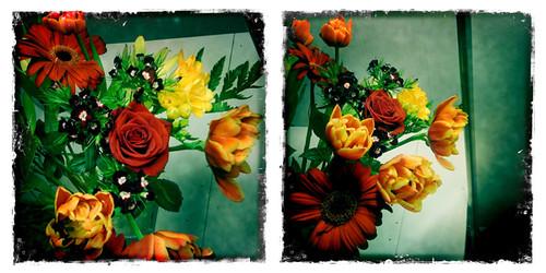 Blumen zum Geburtstag