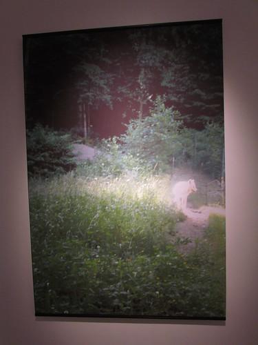 Waiting for a Chinook - Thora Gunnarsdottir (part of installation)