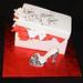 Zabra Stiletto and Shoe Box