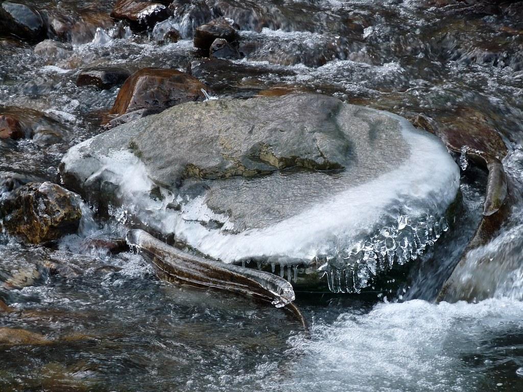 23903 - Frozen Dulais