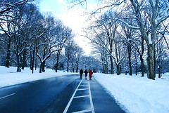 (*alicja*) Tags: park nyc newyorkcity blue trees people usa snow bikepath w
