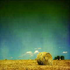 break (moosebite) Tags: blue sky cloud tractor texture nature clouds landscape golden nikon colorado colorful artistic background wheat grunge bluesky textures backgrounds hay haybale johndeere strawbale d80 moosebite jrgoodwin