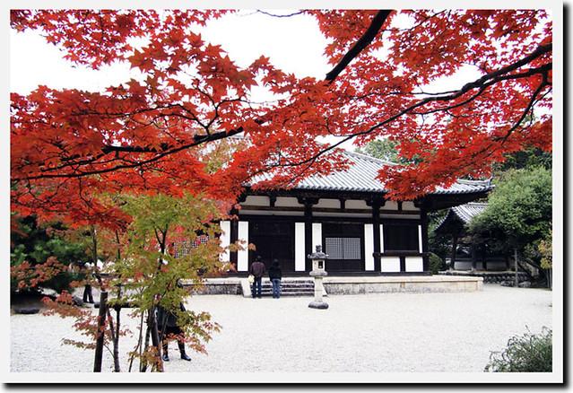20101114_104224_秋篠寺_本堂(国宝)