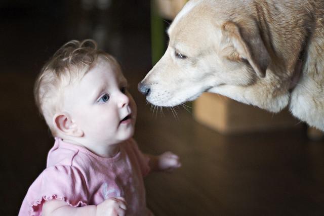 Annie and Aggie