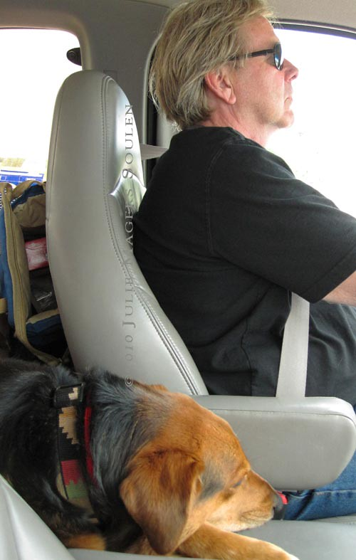 Tired man and dog on long drive.