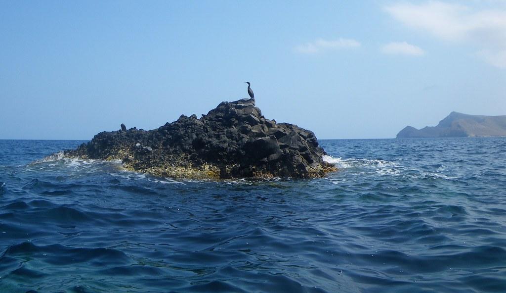 Cabo de Gata en kayak 242