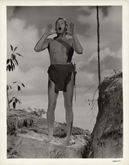 7000-2080 (AliceJapan ʕ •ᴥ•ʔ) Tags: johnny mgm 1941 weissmuller johnnyweissmuller tarzanssecrettreasure