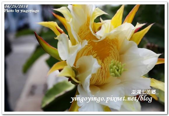 澎湖之旅_七美鄉(龍埕)990425_I0202