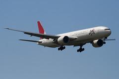 JA734J - 32433 - Japan Airlines - JAL - Boeing 777-346ER - 100617 - Heathrow - Steven Gray - IMG_5247