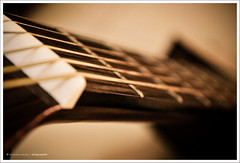 I LOVE my Guitar (Bhavna Saluja) Tags: music interesting dof bokeh guitar acoustic chords mylove guitarworld nikond60 yamahaguitar