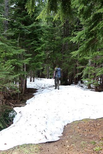 trail where?