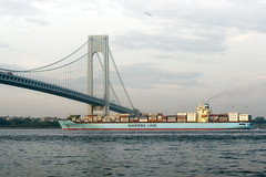 maersk line (mudpig) Tags: nyc newyorkcity bridge cloud ny newyork brooklyn geotagged ship manhattan vessel cargo container hudsonriver statenisland narrows verrazano verrazanonarrows maersk i278 fortwadsworth mudpig stevekelley