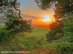 Mystical Sunset (Explored) - Pim Hill Shrewsbury (Daveyboy_75) Tags: trees sunset clouds landscapes shropshire sunsets shrewsbury hills views pinetrees pimhill
