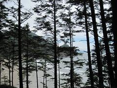 IMG_0586 (reistarr) Tags: beach oregon coast oswaldwest capefalcon shortsandsbeach