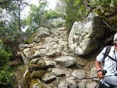 Après les bergeries de Presarella, le chemin dallé de la longue traversée incurvée