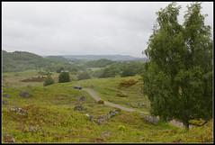 Little Big Car (spodzone) Tags: nature car rock stone landscape scotland highlands rocks boulders toyota geology rav4 farr strathnairn lithology dunlichity psammite neoproterozoic creagbhuidhe semipelite