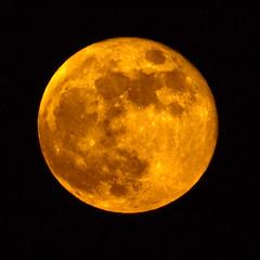 Golden Moon (garreyf) Tags: moon beach marriott fire golden grande dunes south carolina myrtle oceanwatch garreyf