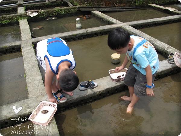 大溪摸硯農場32-2010.06.20