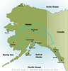 Alaska: Southeast Trippin' and Tweetin'