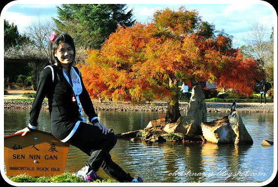 Japanese Garden: Photoshooting