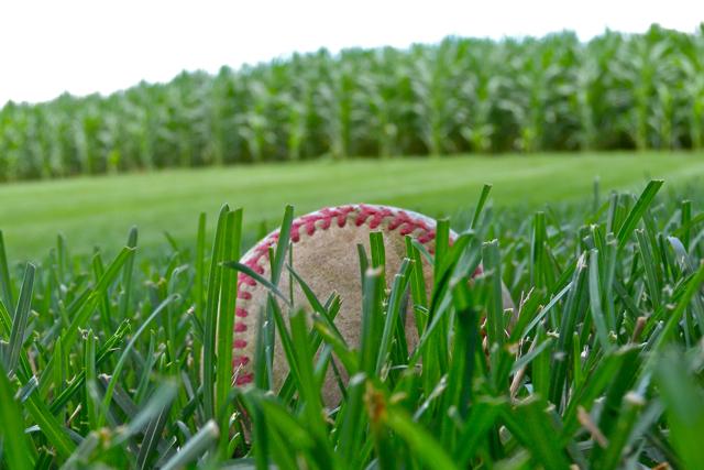 Baseball + Corn