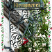 Rosen vom Klempner