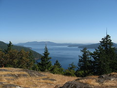 Squally Reach Viewpoint, Timberman Trail