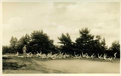 Freikrperkultur - Freisonnland Nudist camp, Motzenmuhle Berlin   1930s postcard (sludgegulper) Tags: see german naturism fkk nudism freikrperkultur motzen freikorperkultur nakte freisonnland freesunland nakten nacktsportlplatz