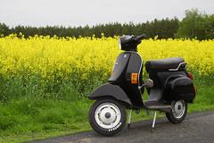 Vespa PK50XL finally restored (LikeItWide) Tags: black vespa restored pk50 sigmaexdf2870mmf28