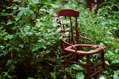 not at home (Simply Stardust) Tags: abandoned overgrown miniature wooden chair remember village historical bushes meadowvale woodenchair historicallyaccurate terrywilson meadowvalevillage rosemarywilson terrywilsonsminiaturemeadowvale itsalmostasifyoureteleportedbackintime