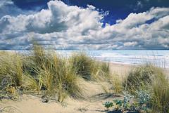 sulla spiaggia (leowincy) Tags: digitalcameraclub mywinners abigfave colorphotoaward magicunicornverybest mygearandmepremium passiondéclic