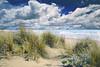sulla spiaggia (leowincy - mauro sassetti) Tags: digitalcameraclub mywinners abigfave colorphotoaward magicunicornverybest mygearandmepremium passiondéclic