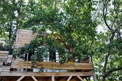 Séjour Cabane dans les arbres (Mas Escombelle à Barjac)