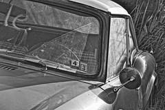 Triumph.12 (mcreedonmcvean) Tags: old cars junkyard