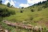 valley spring (kosova cajun) Tags: summer cold water landscape spring highlands clear pasture kosova kosovo pastoral wateringtrough kosovë rugova peisazh bogë rugovë bjeshkëtenemuna accursedmountains bjeshkë albanianalps luginë alpetshqiptare