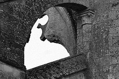11 - 12 juillet 2010 Longpont L'abbaye, le soir Le cri de la pierre (melina1965) Tags: blackandwhite bw abbey nikon noiretblanc faades july juillet faade 2010 picardie abbaye smrgsbord aisne abbeys longpont d80 abbayes geniiloci thisphotorocks flickrsmasterpieces nikondslrforum