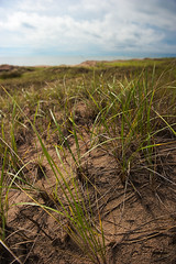 There's a Feeling I Get (Andrew Kufahl) Tags: sky beach grass wisconsin landscape sand nikon shoreline shore 2010 d700 nikond700