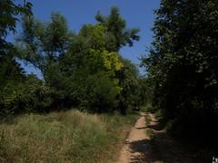 Priroda (Ž.M) Tags: nature priroda