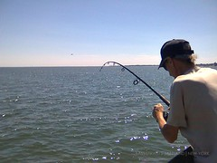 Fishing in Milford (CT) -23